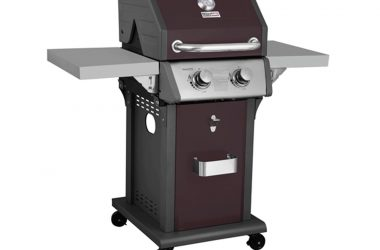 Royal Gourmet 2 Burner Patio Propane Gas Grill